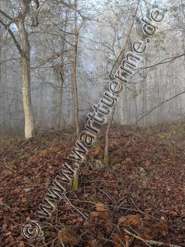 edelberg-warte-500px